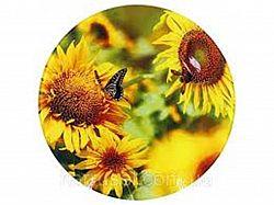 Q032 Блюдо стекло круглое d.30 Подсолнух и бабочка